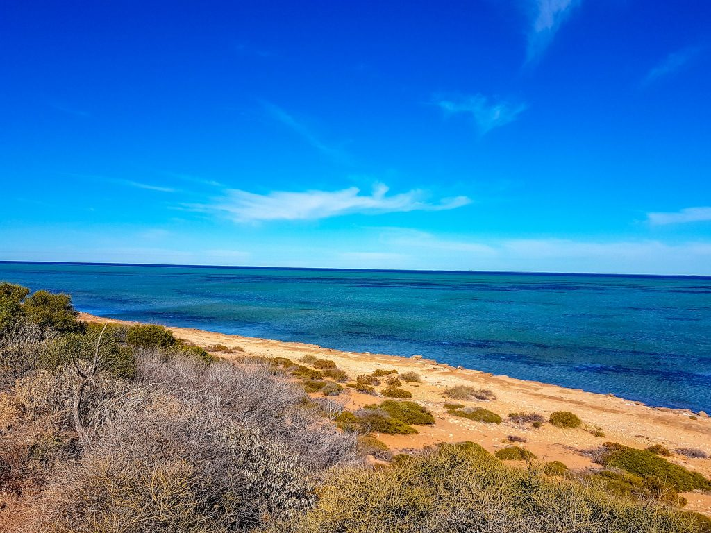 Western Gulf of Shark Bay